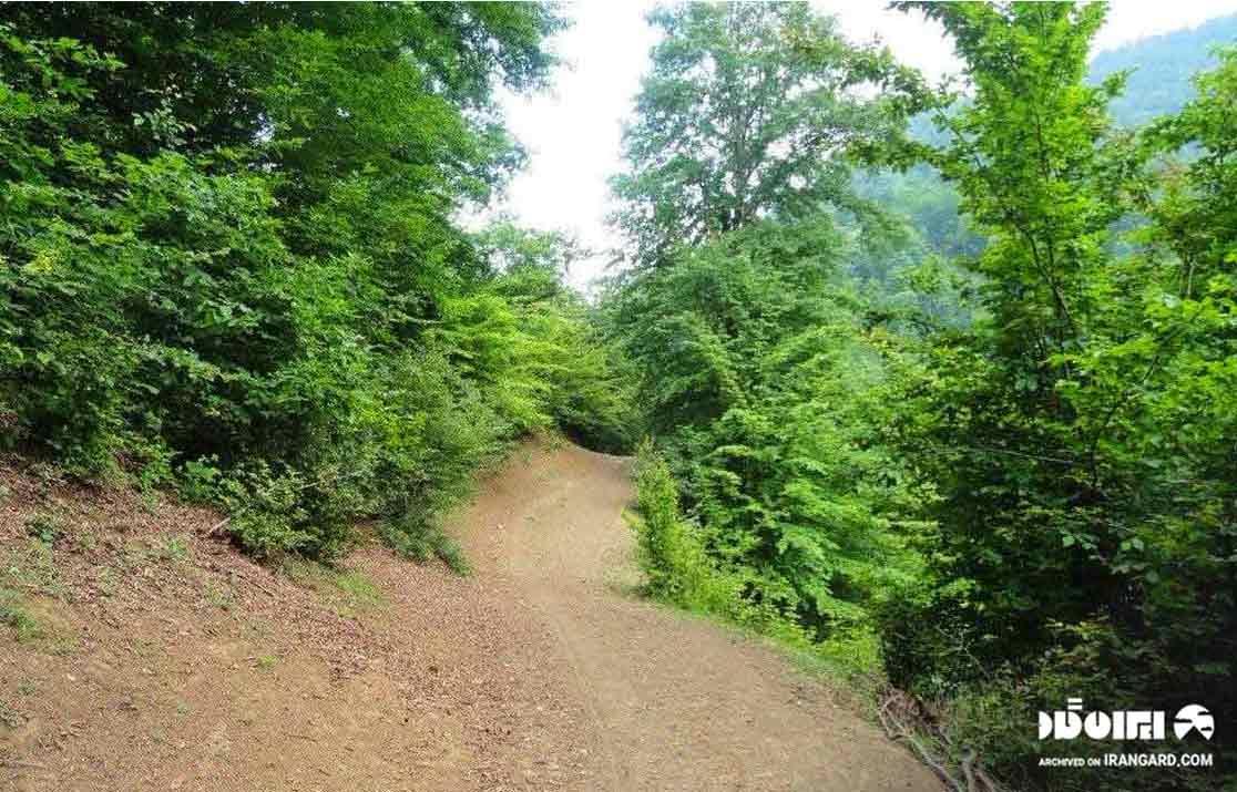 مسیر جنگل لیسار؛ دیدنیهای سوباتان