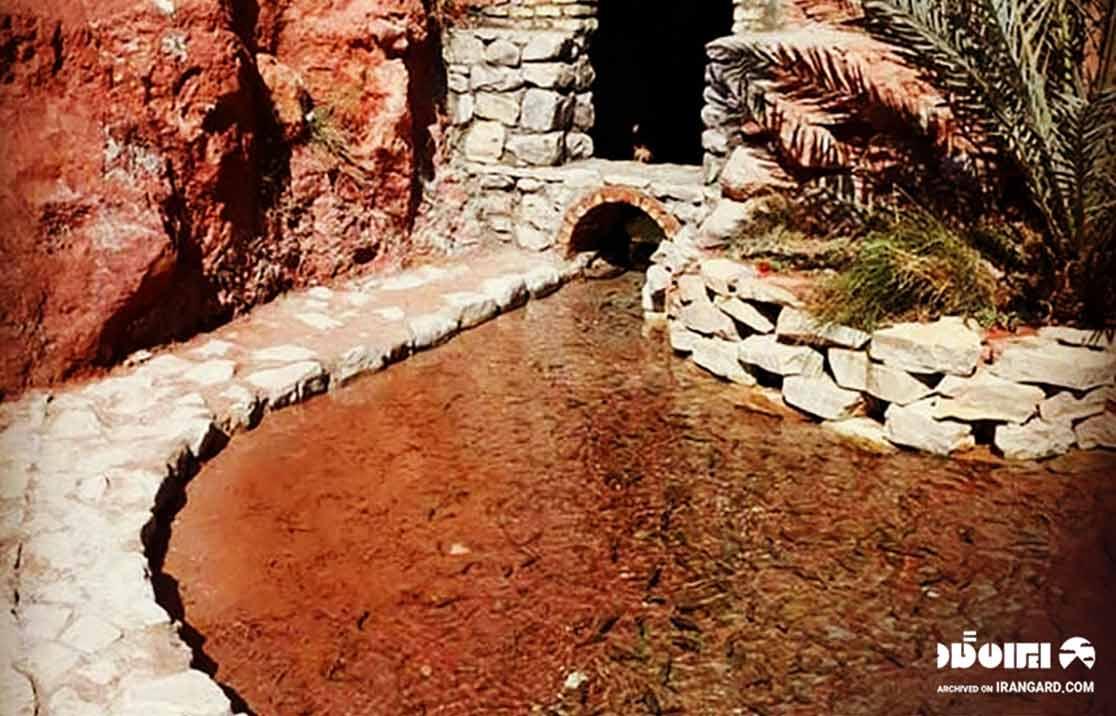 دریاچه دکتر فیش