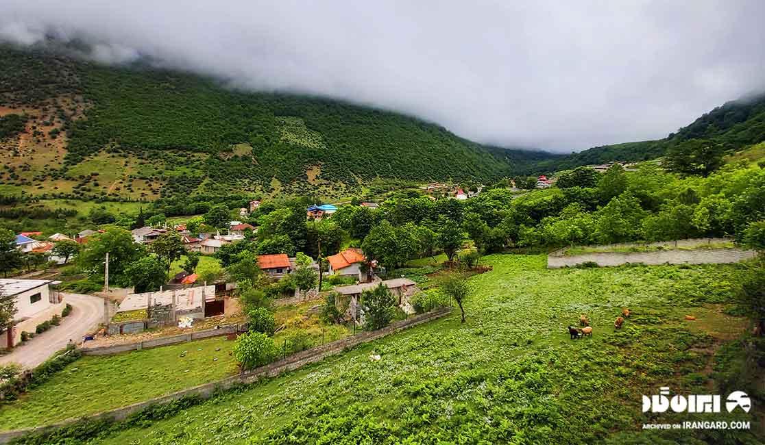 روستای لاویچ