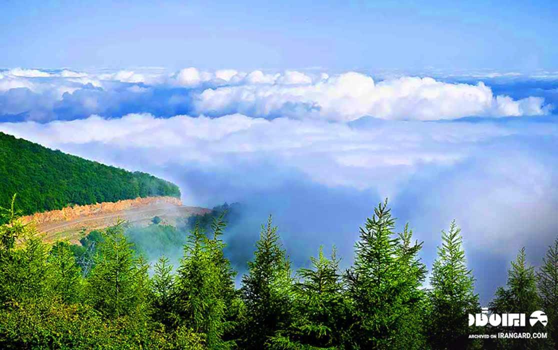 جنگل ابر - جاهای دیدنی سمنان