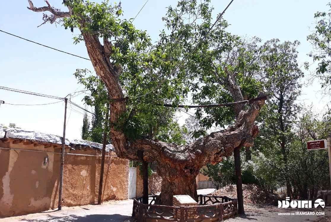 شهر شهمیرزاد