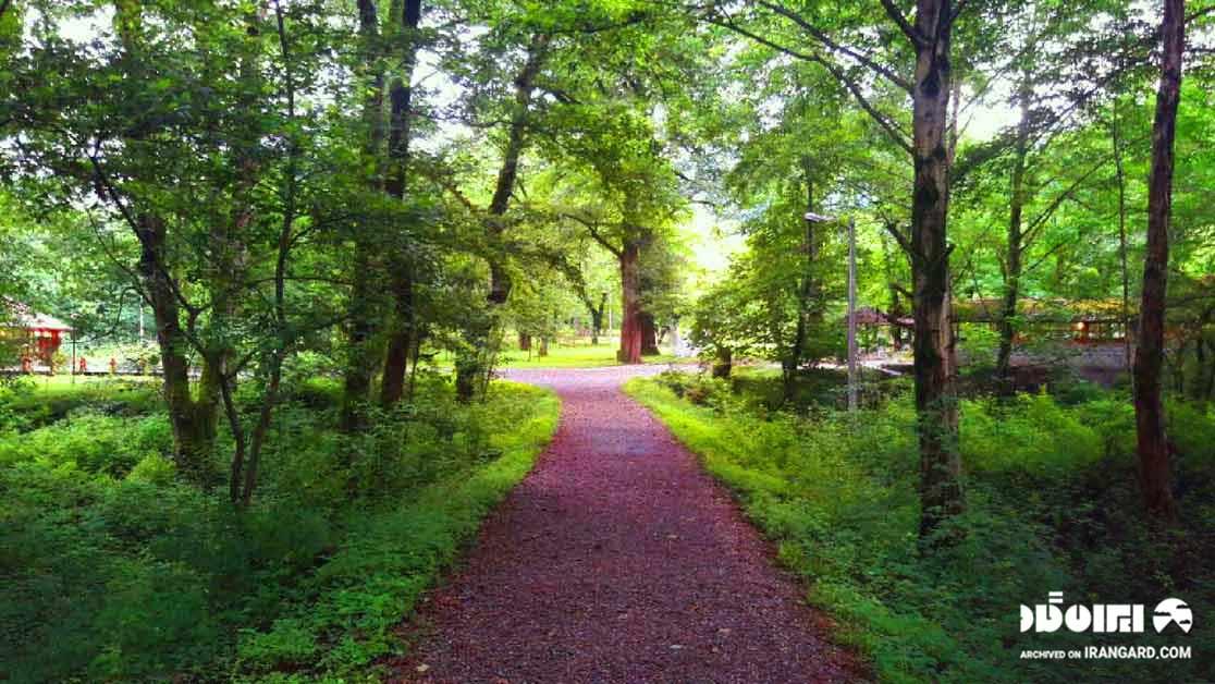 پارک جنگلی چالدره - جاهای دیدنی تنکابن