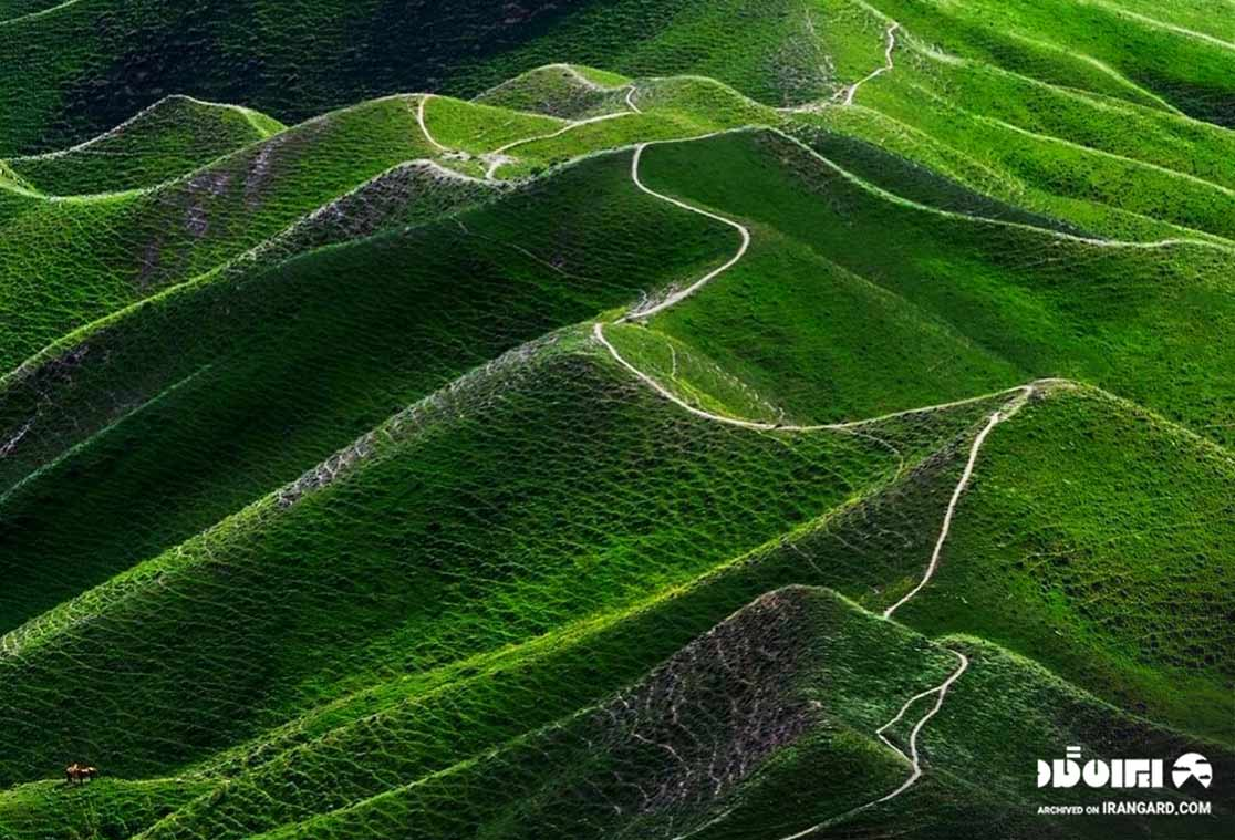 ترکمن صحرا کجاست