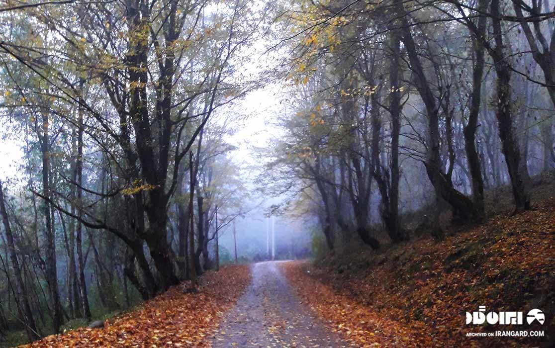جنگلهای دوهزار - دیدنی های تنکابن