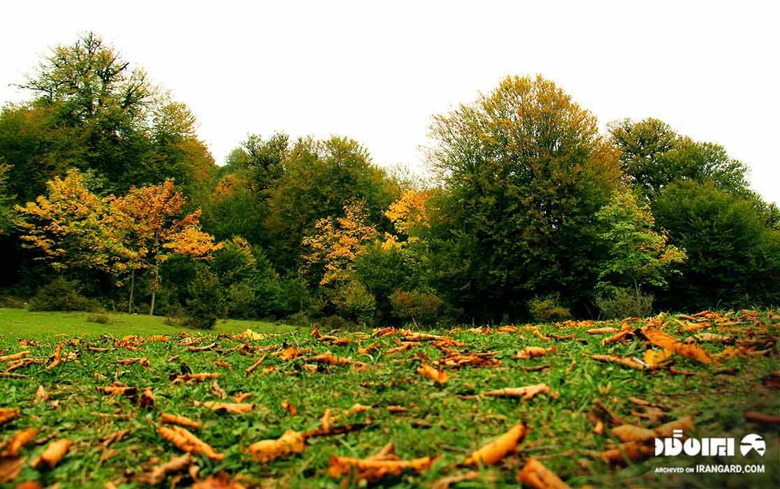طبیعت مازیچال
