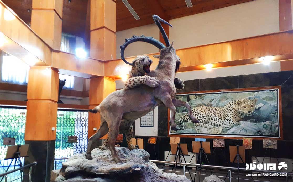 موزه حیات وحش پارک گلستان
